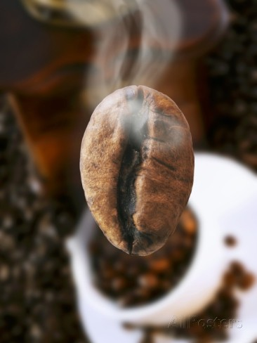 roasted coffee bean